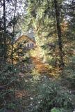 秋天客舱在森林 图库摄影