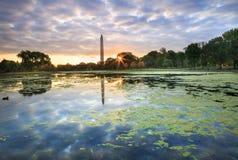 秋天宪法庭院华盛顿特区纪念碑 免版税库存照片