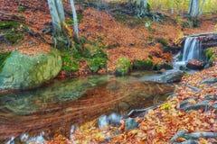 秋天小河在森林里,金子秋天欧洲人风景 库存图片