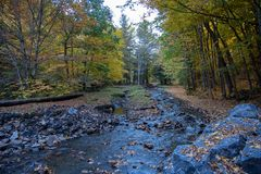 秋天小河在磨刀石海湾国家公园 图库摄影