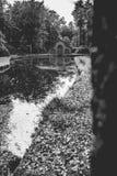 秋天小船的森林客舱在黑&白色的一个公园 库存照片