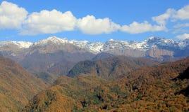 秋天山和森林 库存照片