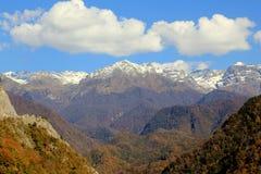 秋天山和森林 图库摄影