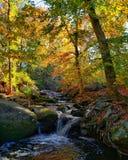 秋天山小河风景视图 秋天的蓝岭山脉 免版税库存照片