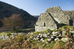 秋天山楂树和教会废墟 免版税图库摄影