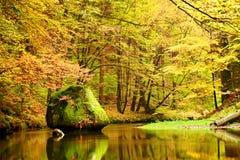 秋天山河的颜色 有叶子的,树五颜六色的银行在河上弯曲了 大冰砾在河 库存图片