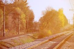 秋天工业风景 后退入在绿色和黄色秋天树中的距离的铁路 免版税库存照片