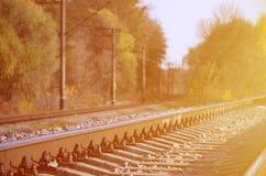 秋天工业风景 后退入在绿色和黄色秋天树中的距离的铁路 库存照片