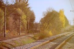 秋天工业风景 后退入在绿色和黄色秋天树中的距离的铁路 免版税图库摄影