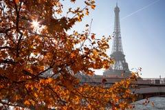 秋天巴黎 库存照片