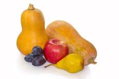 秋天带来果子 免版税图库摄影
