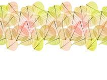 秋天干燥金黄叶子-被隔绝的无缝的边界 免版税库存照片