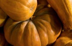 秋天平的南瓜特写镜头背景样式橙色生物碱 免版税库存照片