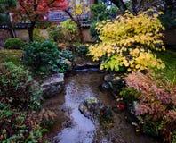 秋天庭院在京都,日本 库存图片