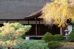 秋天庭院日本人结构树 免版税库存照片