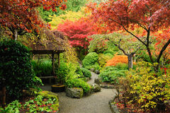 秋天庭院日语 库存图片