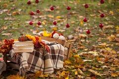 秋天庭院装饰 库存图片