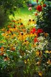 秋天庭院 库存图片