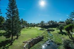 秋天彩色场标志高尔夫球沙子结构树 库存图片