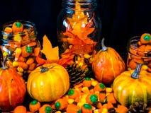 秋天彩色显示 免版税库存图片