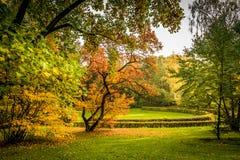 秋天心情在公园 库存照片