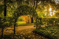 秋天心情在有叶子曲拱的一个公园  图库摄影