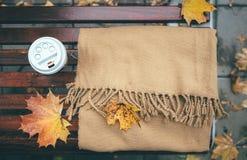 秋天心情:围巾和coffe杯子在秋天banch 免版税库存照片