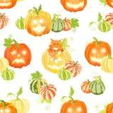 秋天愉快的南瓜和猫无缝的传染媒介打印 免版税库存照片