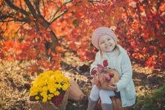 秋天愉快的小女孩获得使用与下落的金黄叶子的乐趣 库存图片
