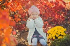 秋天愉快的小女孩获得使用与下落的金黄叶子的乐趣 免版税库存照片