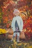 秋天愉快的小女孩获得使用与下落的金黄叶子的乐趣 免版税库存图片