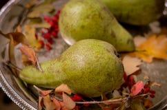 秋天成熟绿色梨,黄色在一个银色盘子离开 免版税库存照片