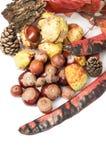 秋天或秋天装饰顶视图  免版税库存图片