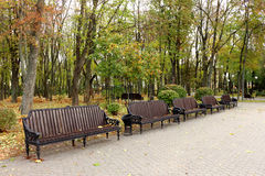 秋天把公园风景换下场 库存照片