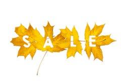 秋天折扣 从楔子叶子雕刻的信件 免版税库存图片