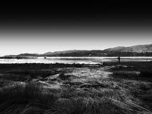 秋天挪威Lofoten海岛射击秀丽  免版税库存照片