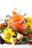 秋天排列用南瓜和向日葵 免版税库存照片