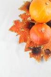 秋天排列用南瓜 免版税库存图片