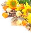 秋天排列用向日葵 免版税库存照片