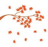 秋天摘要设计商标和几何 库存图片