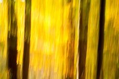 秋天摘要 图库摄影