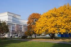 秋天撒克逊人的庭院在华沙 免版税图库摄影