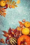秋天收获南瓜在蓝色背景的感恩框架 图库摄影