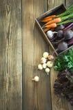 秋天收获新鲜蔬菜,红萝卜,甜菜根,葱,在老木板的大蒜 顶视图 复制空间 库存照片