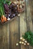 秋天收获新鲜蔬菜,红萝卜,甜菜根,葱,在老木板的大蒜 顶视图 复制空间 免版税库存照片