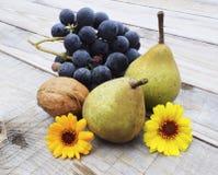 秋天收获果子 免版税库存图片
