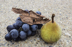 秋天收获果子 图库摄影