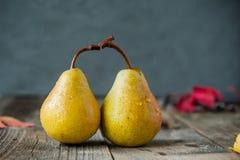 秋天收获概念-新鲜的成熟有机黄色梨夫妇用水在土气木桌,黑暗的石背景上下降 库存照片