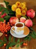 秋天收获秋天构成之前围拢的一杯茶 库存图片