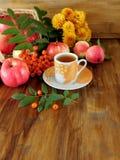 秋天收获花楸浆果、苹果和叶子之前围拢的一杯茶  免版税库存照片